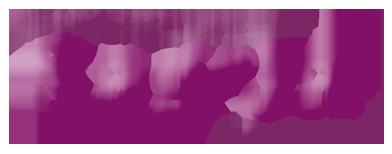 hochzeitsmesse thum logo Kopie Kopie